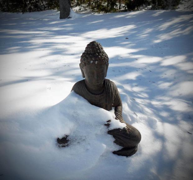 Bouddha du Zen enneigé